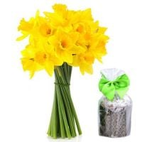 Bouquet «19 daffodils» - amazing Easter gift!