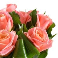 Afrodith, Coral roses,  bouquet of colar roses, bouquet of roses. bouquet for lady, peach bouquet