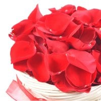 Bouquet Rose Petals