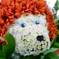 Bouquet Small hedgehog