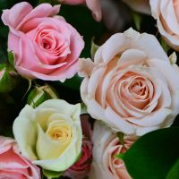 Flower bouquet «Pink and white» order with delivery