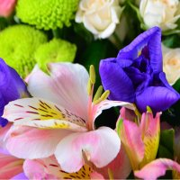 Order the bouquet «Wonderful» with delivery ❀