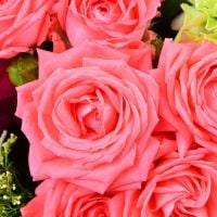 To buy a bouquet ''Summer vernissage'' with delivery