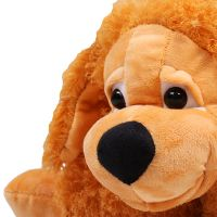 Pillow dog, ginger doy toy, pillow toy, order gift, present soft toy delivery, gift delivery, unusua