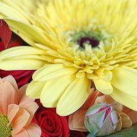 Order delightful bouquet bouquet «Bright Mix of 15 Flowers» with delivery