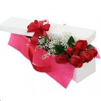 Order bouquet «7 roses in a gift box» online
