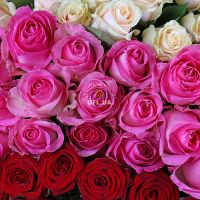 Order bouquet «Magic ball of 303 roses» in the internet-shop UFL.