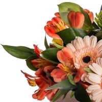 Order a beautiful bouquet «With tenderness» at the internet-shop with delivery