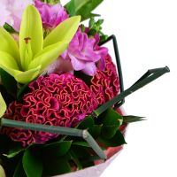Buy beautiful bouquet with unusual design! Delivery to any city in the worl.
