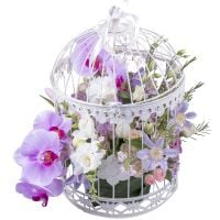 Order the bouquet «French Garden» in our online shop. Delivery!