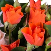 Order wonderful bouquet «Pearl of the Desert» in our online shop
