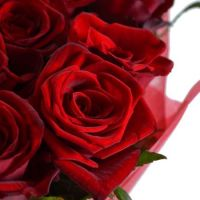 Bouquet Flame of senses 25 roses 60 cm