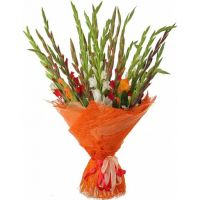 To order a bouquet of flowers «Cocktail of gladioli» with delivery