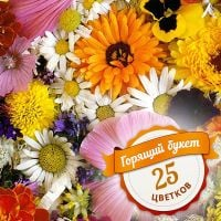 �Hot bouquet of 25 flowers� buy online with special offer