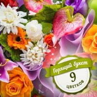 Special offer for «Hot bouquet of 9 flowers»