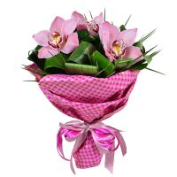 Buy extraordinary �Three orchids� bouquet with the same day delivery