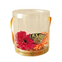 Product Live Butterfly in Box with Flowers