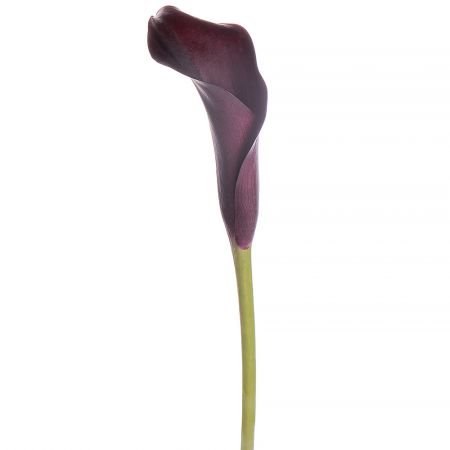 Bouquet Piece purple calla