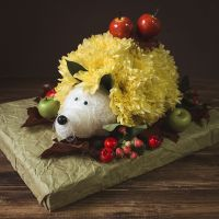 Order the bouquet «Flower hedgehog» in our online shop. Delivery!