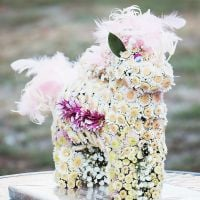 Order the bouquet «Pretty Pony» in our online shop. Delivery!
