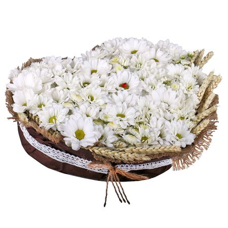 Order cute chrysanthemum bouquet «Snow Heart» with delivery