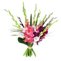 To order a beautiful bouquet of gladioli «Fireworks»