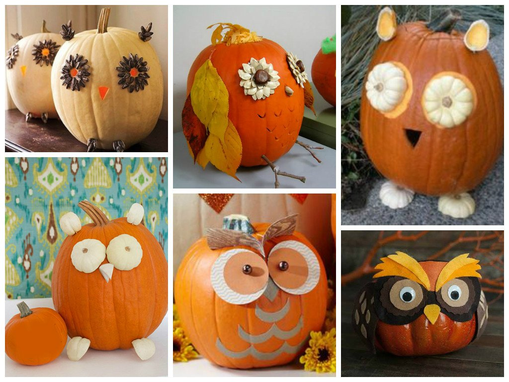 Decorated pumpkins owl