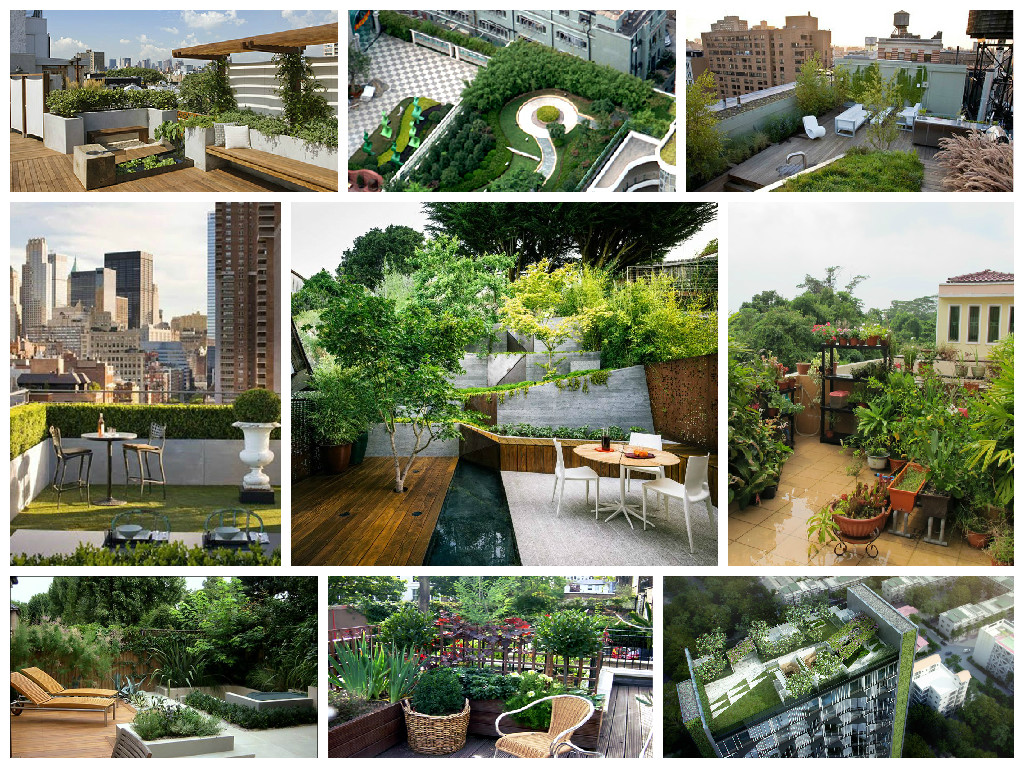 Ideas for roof gardens